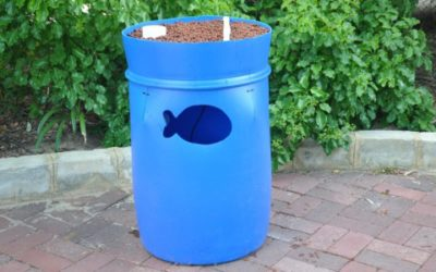 'Farm in a Barrel': Raise fish and grow your own organic vegetables